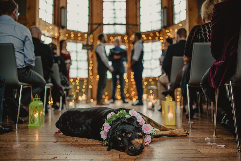 Gio Ledda Photography - Gary & Aaron: Emerald Lake Wedding